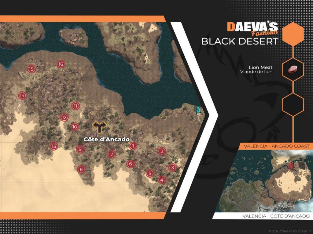 Viande de lion spot Black Desert